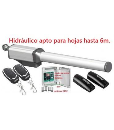 Kit Hidráulico 1 hoja Batiente